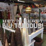 Het is volop kerst bij Twiddus.